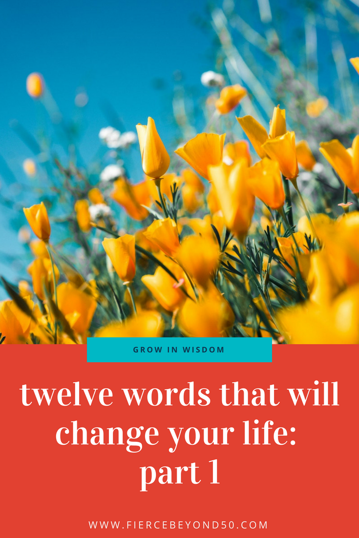Twelve Words That Will Change Your Life: Part 1