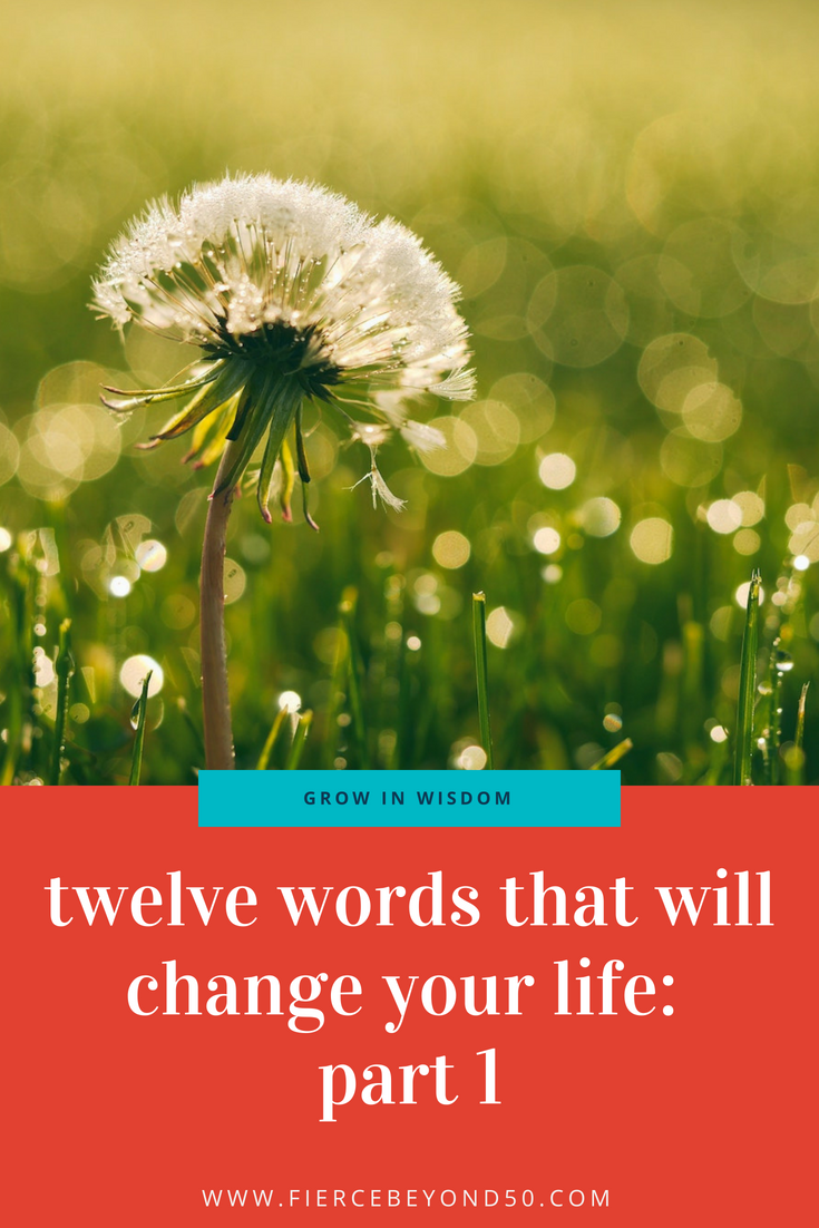Twelve Words That Will Change Your Life: Part 2