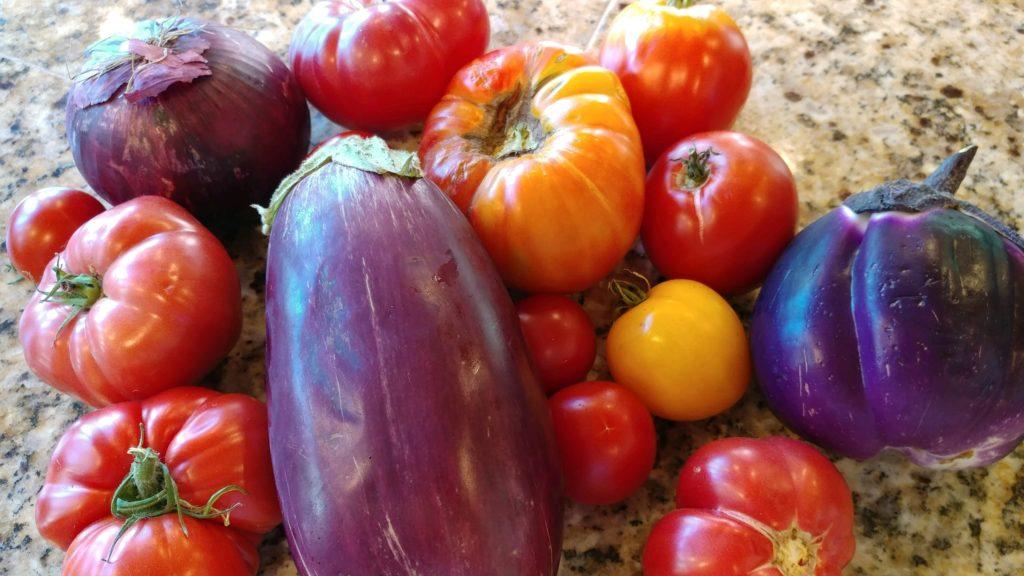 eggplant tomatoes summer quinoa salad