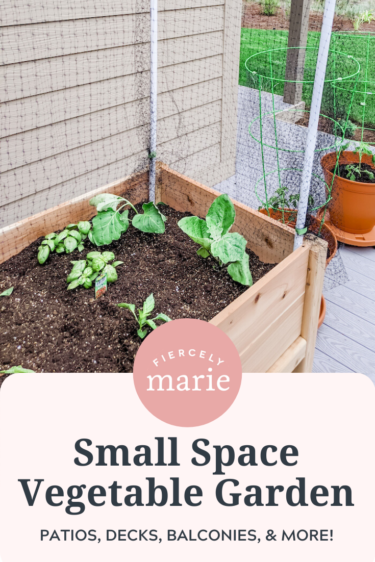 Patio & Small Space Vegetable Gardening