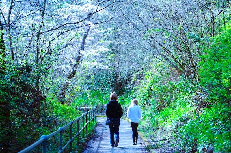 Some things to do to Stop worrying include going for a walk - two women walk down a boarded outdoors path surrounded by trees