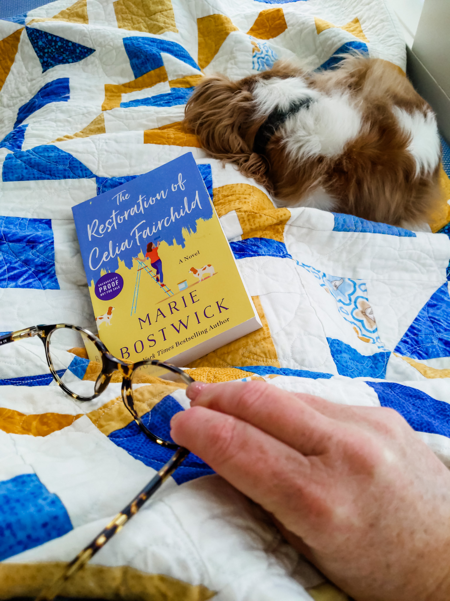 A copy of The Restoration of Celia Fairchild on a quilt, with Marie's sleeping dog in the background.