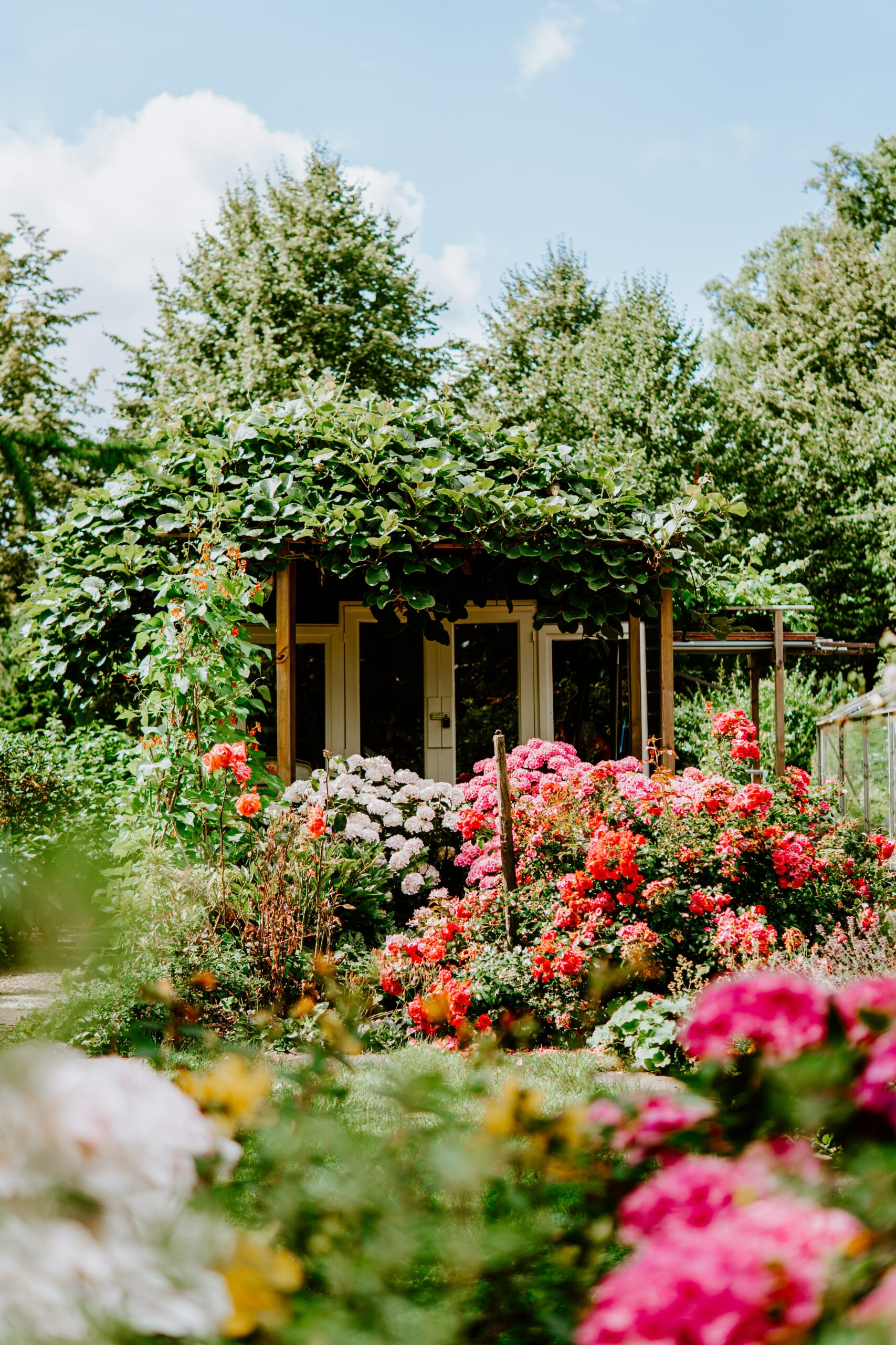 A house covered in plants and flowers