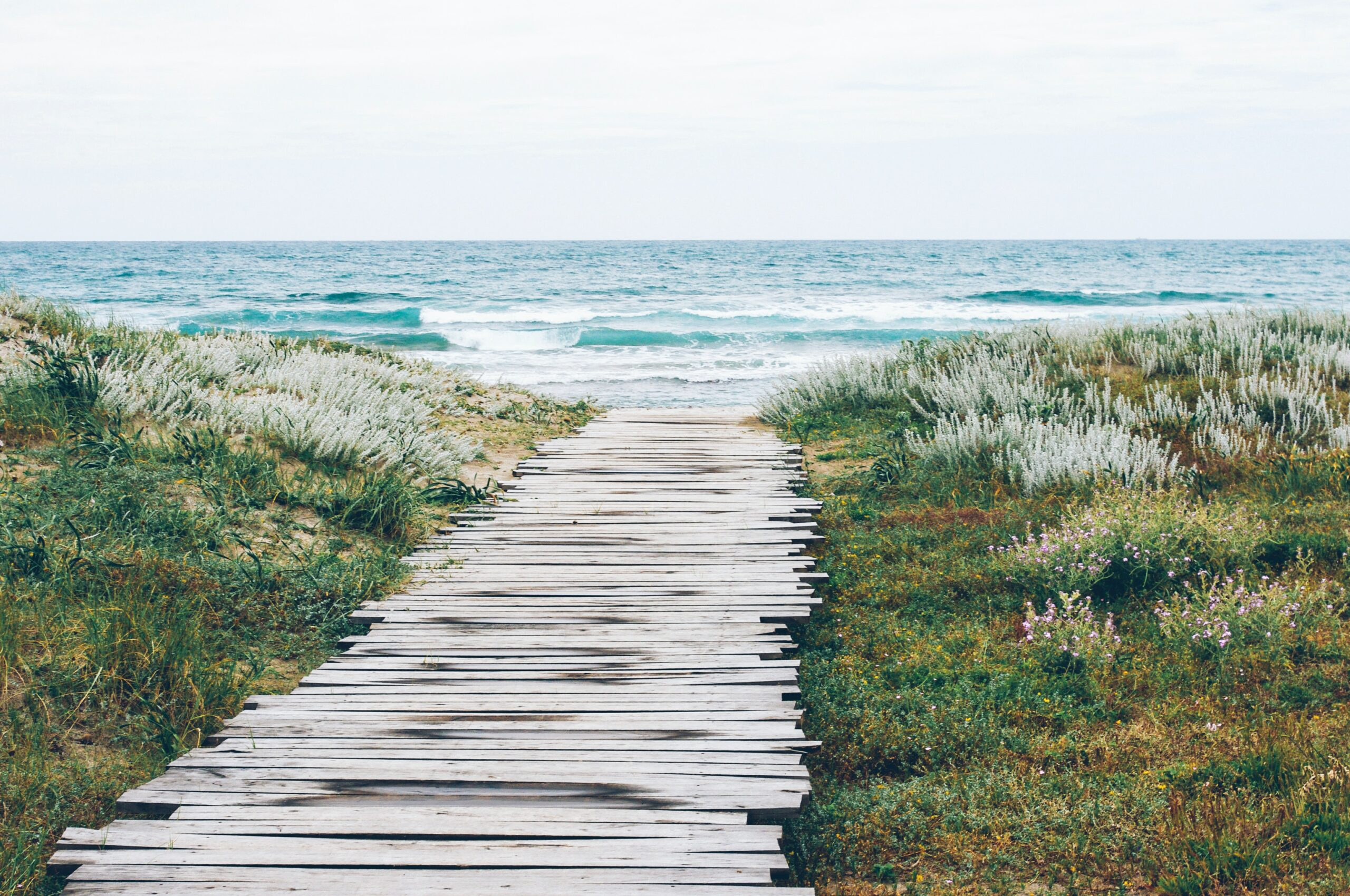 A boardwalk leading to an oceanfront