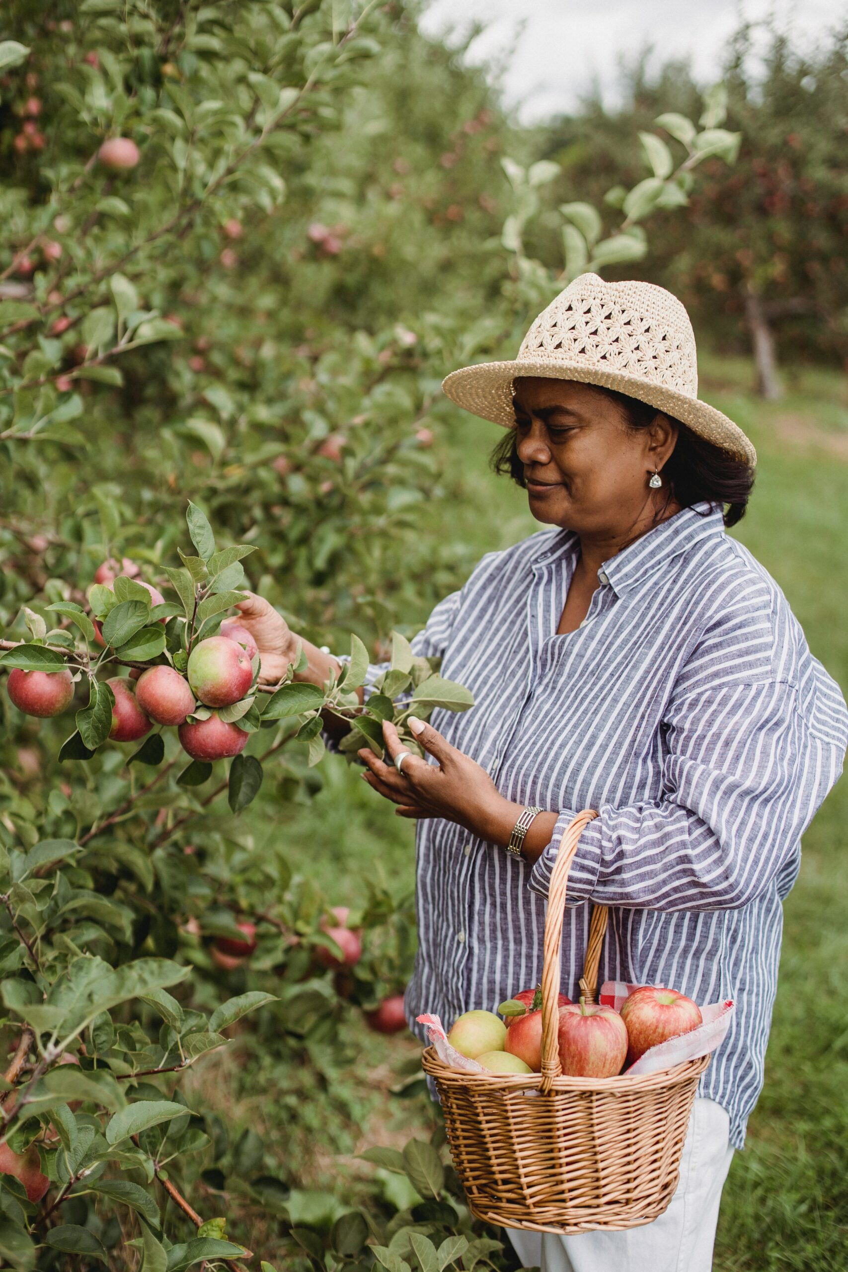 A woman spending otime outdoors by picking apples - one of the recommended personal practices