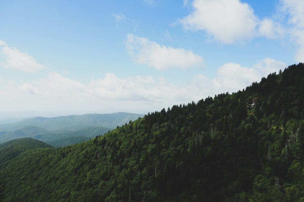 The reason behind Asheville's nickname - large expanse of green mountains