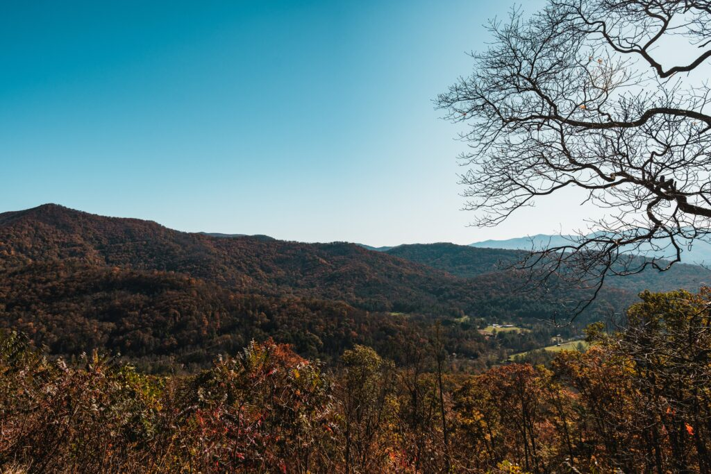 A view of a mountain covered in fall foliage - Asheville, NC in a Day